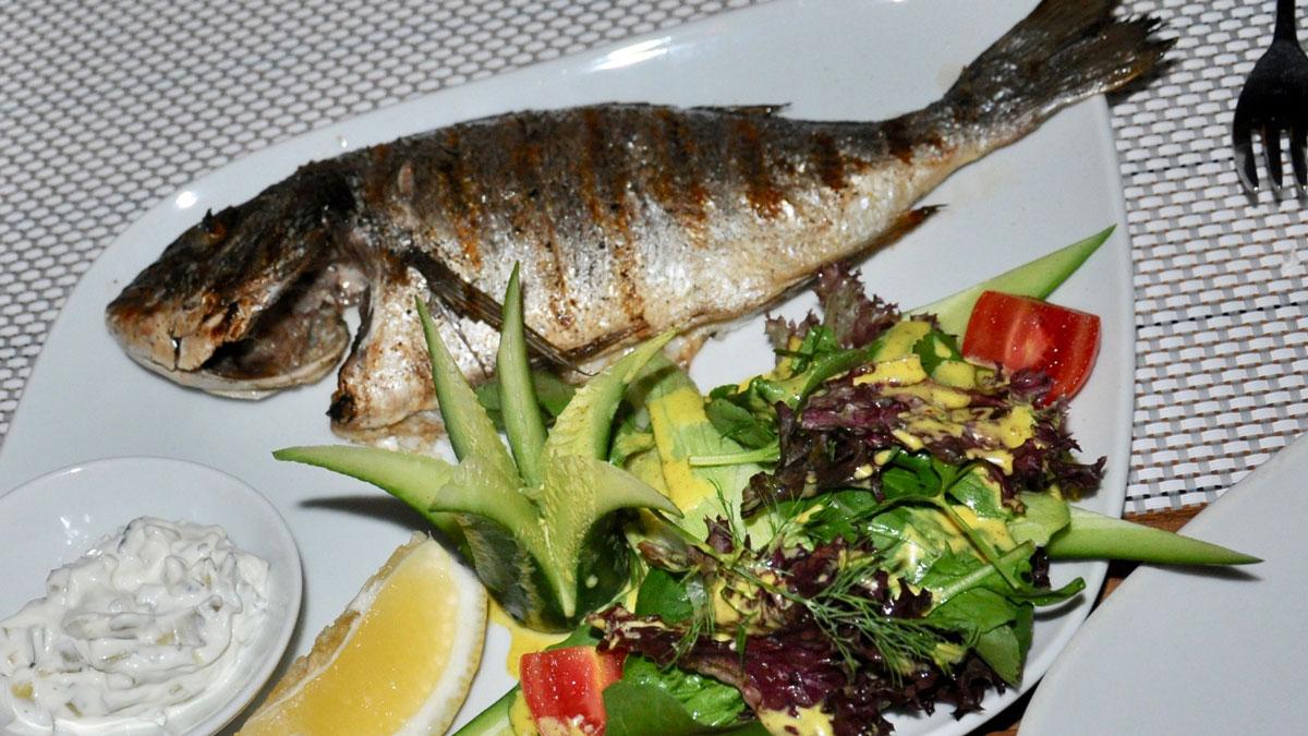 Restaurant Marco: Dorado vom Grill mit Salatbouquet