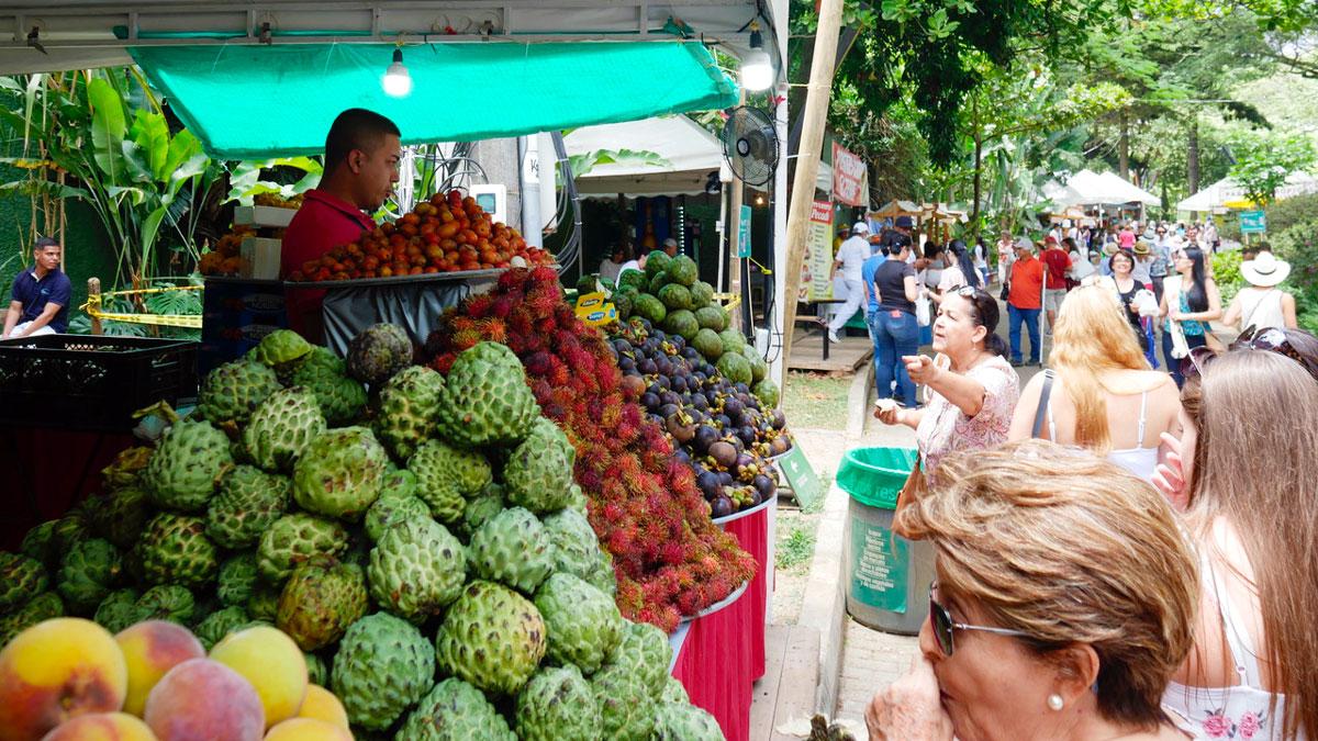 Markt im Botanischen Garten