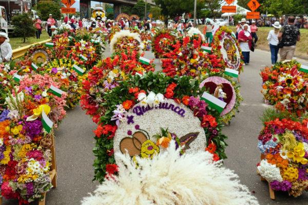 """Auf der """"Feria de los Flores"""" präsentieren Blumenzüchter ihre Kunstwerke"""
