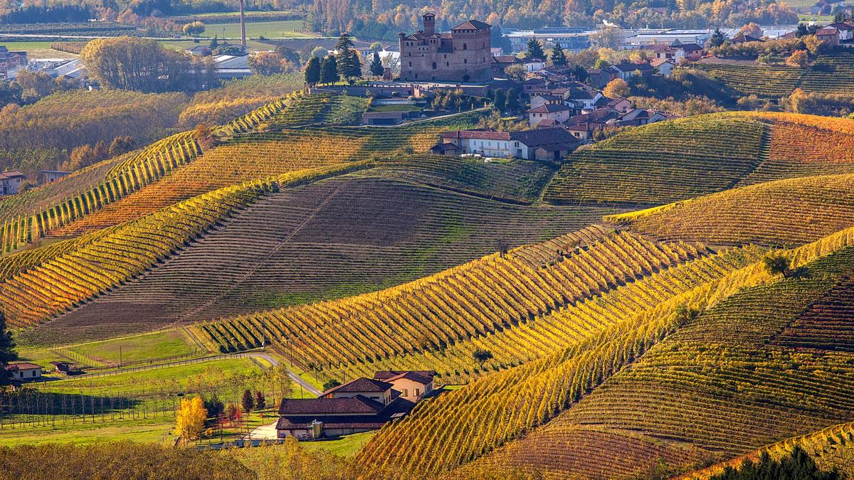 Das Piemont: auf sanften Hügeln wachsen große Weine.