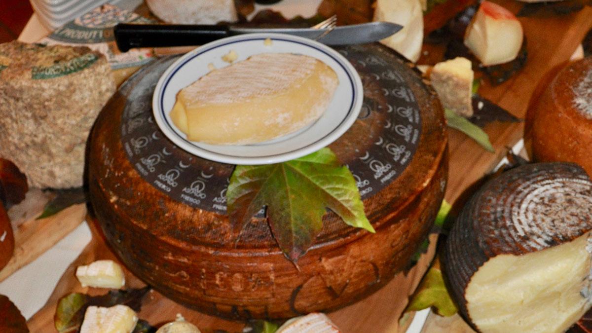 Felicin: Die besten Käse aus dem Piemont zum kräftigen Barolo. Foto WR