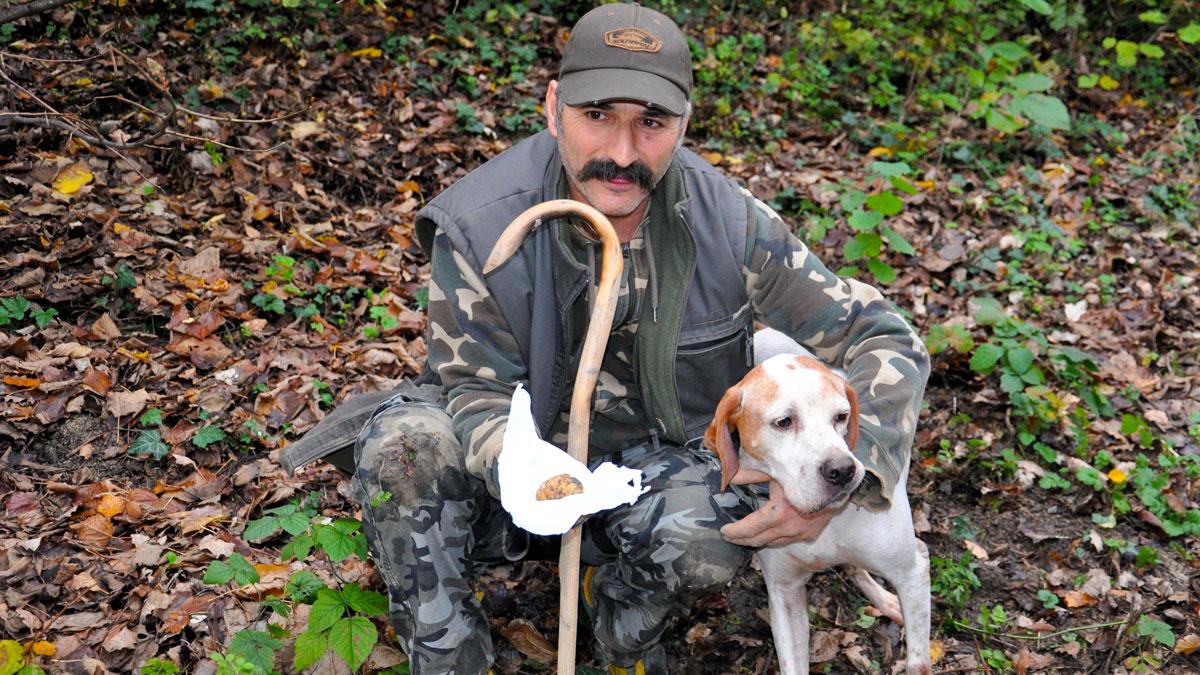Cosimo zeigt eine weiße Trüffel, den sein Hund (Rasse Pointer) gerade gefunden hat. Foto WR