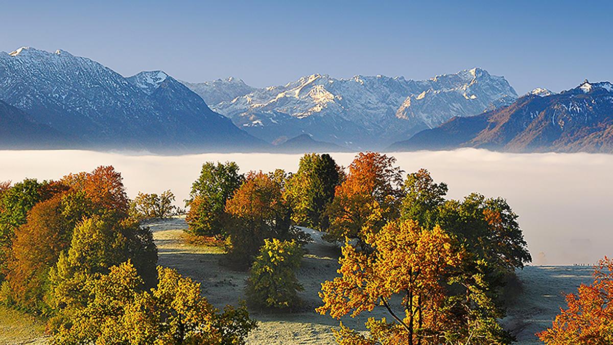 """""""Indian Summer"""" im Murnauer Moos. Das Blaue Land im Herbst. Foto Aldinger"""