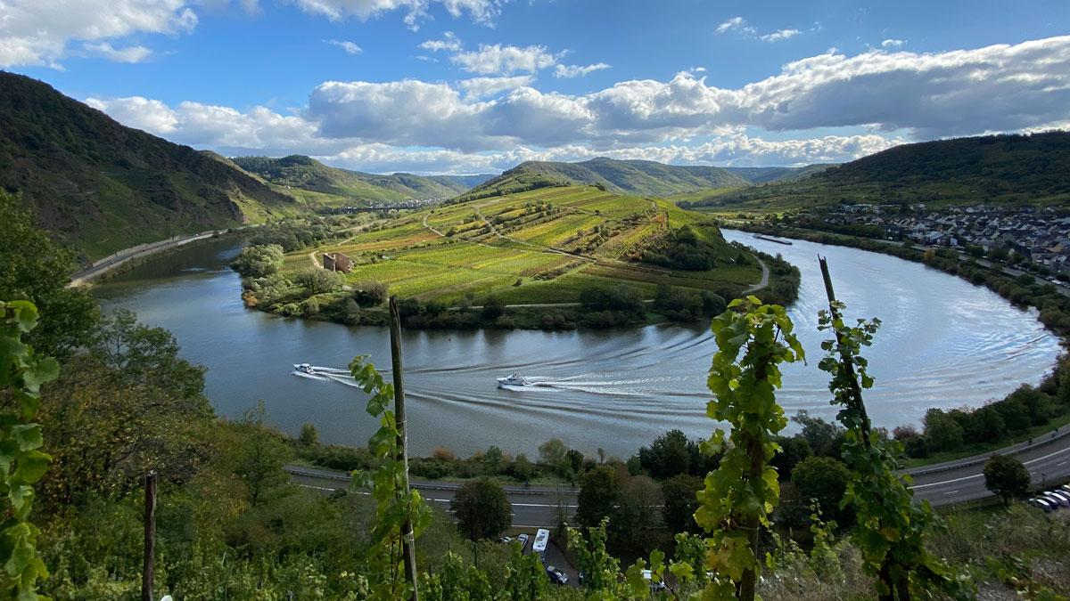 Schöne Kurve: Blick auf die Moselschleife vom Bremmer Calmont, dem steilsten Weinberg Europas (Foto: Hemme)