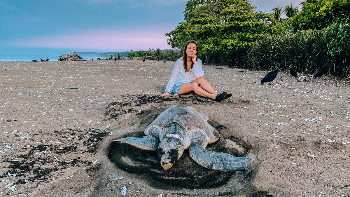 Hier fühlt sich die Natur wohl: Hunderttausende Oliv-Bastardschildkröten kommen jedes Jahr zum Strand von Ostional zur Eiablage. Foto: Inna Hemme
