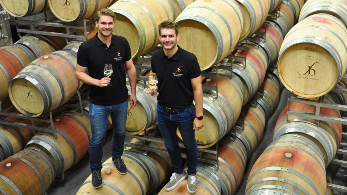 Benedikt und Jakob Bimmerle im Barrique-Keller des Weingutes. Foto WR
