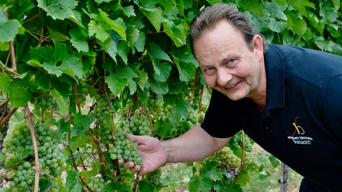 Siegbert Bimmerle ist mit dem Jahrgang 2020 sehr zufrieden. Foto WR