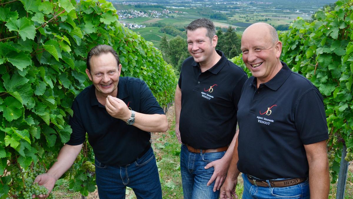 Geballte Manpower im Weinberg: Siegbert Bimmerle, Kellermeister Philipp Milke, Winzer Bernhard Fritsch. Foto WR